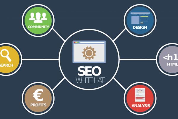 SEO webdesign Diepenbeek